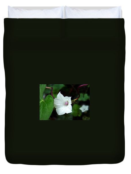 Duvet Cover featuring the photograph Wild Whitestar Morning Glory by William Tanneberger