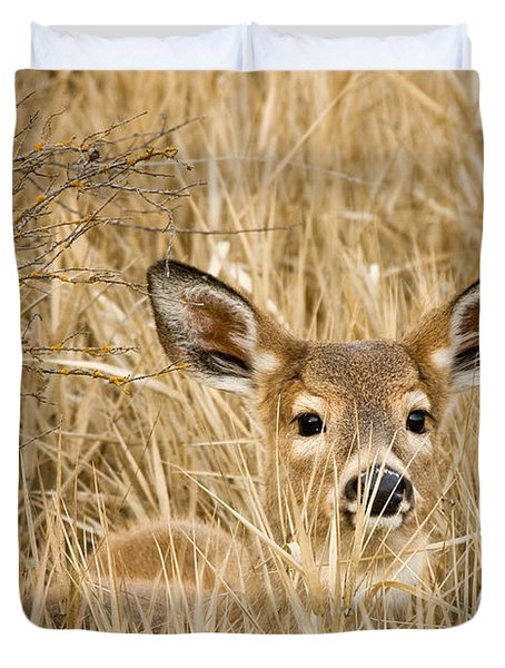 Whitetail In Weeds Duvet Cover