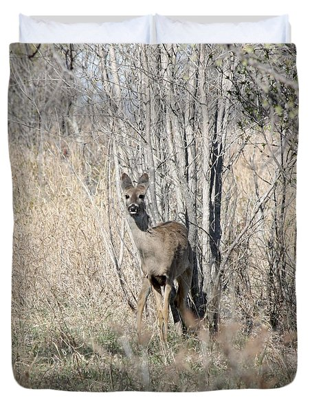 Whitetail Undercover Duvet Cover by Lori Tordsen