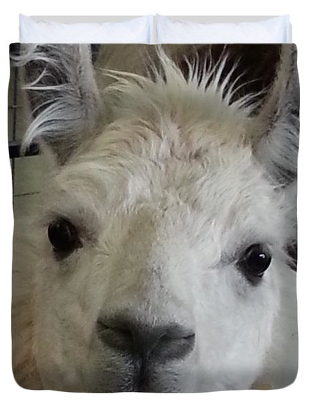 Duvet Cover featuring the photograph Who Me Llama by Caryl J Bohn