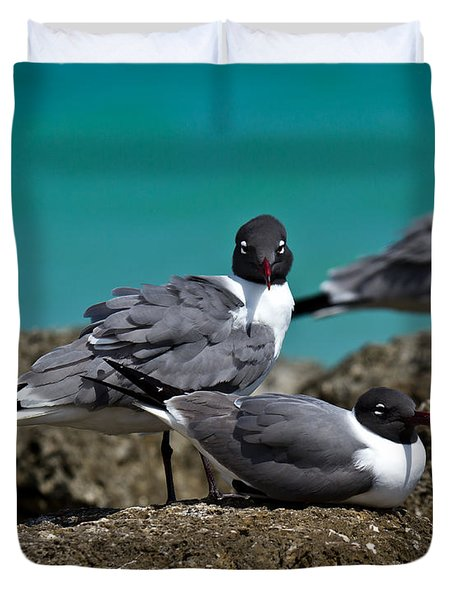 Duvet Cover featuring the photograph Why You Looking? by Robert L Jackson