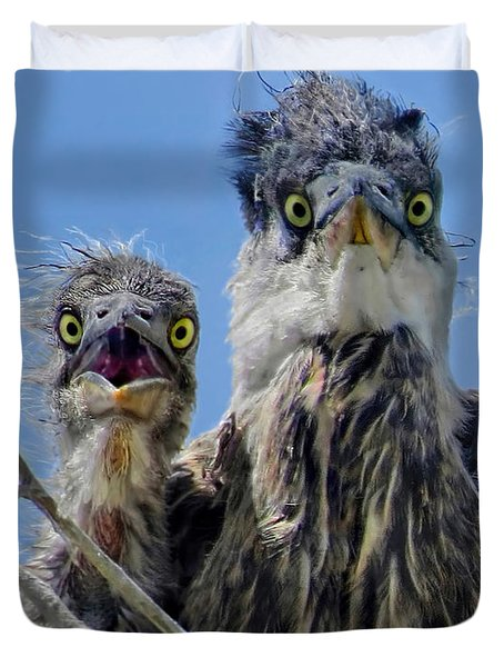 Wide Eyed Baby Herons Duvet Cover