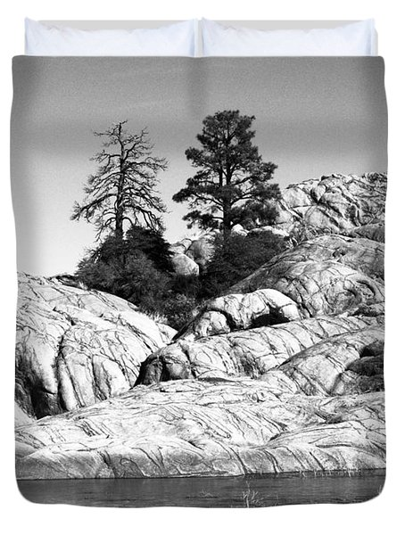 Willow Lake Number One Bw Duvet Cover by Heather Kirk
