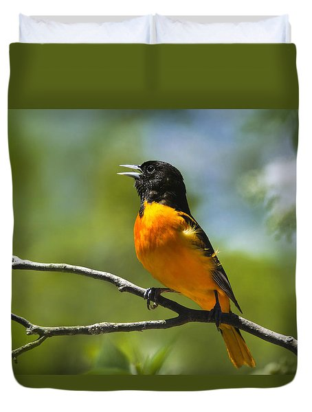 Wild Birds - Baltimore Oriole Duvet Cover by Christina Rollo