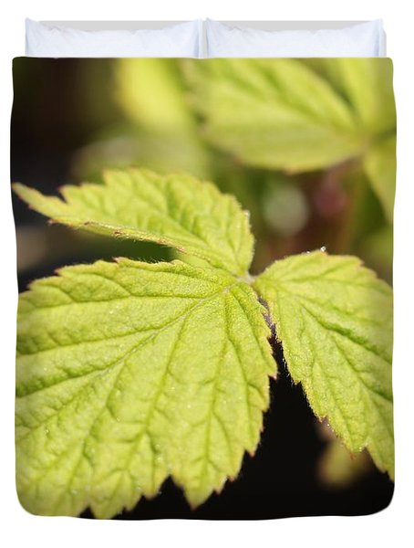 Wild Black Raspberry Leaves Duvet Cover by J McCombie