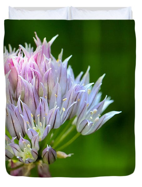 Wild Blue - Chive Blossom Duvet Cover by Adam Romanowicz
