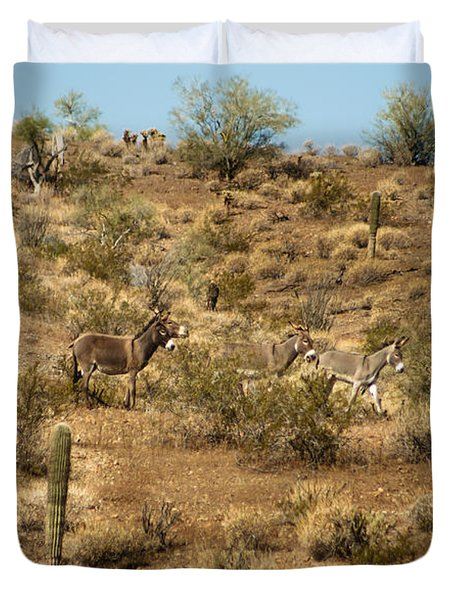 Wild Burros Duvet Cover by Robert Bales
