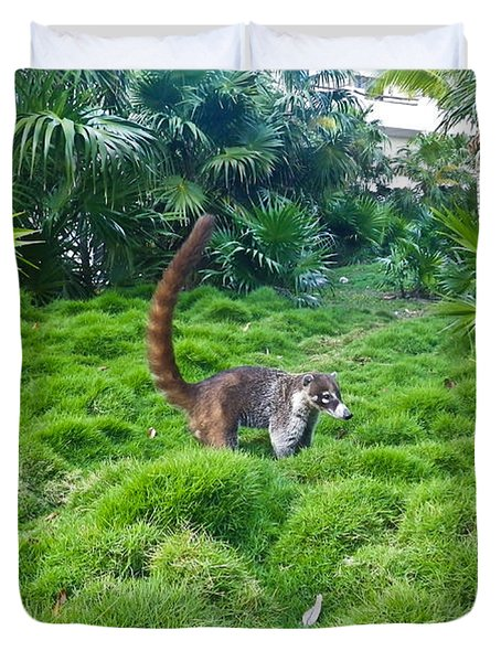 Wild Coati Duvet Cover by Eti Reid