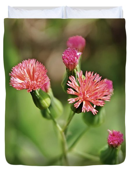 Duvet Cover featuring the photograph Wild Flower by Olga Hamilton