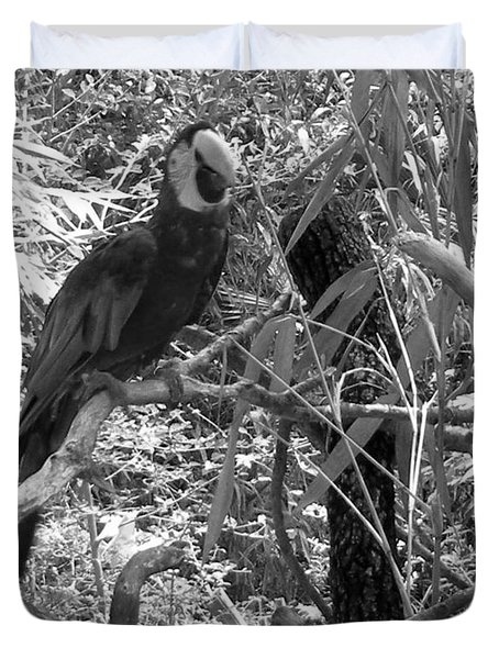 Duvet Cover featuring the photograph Wild Hawaiian Parrot Black And White by Joseph Baril