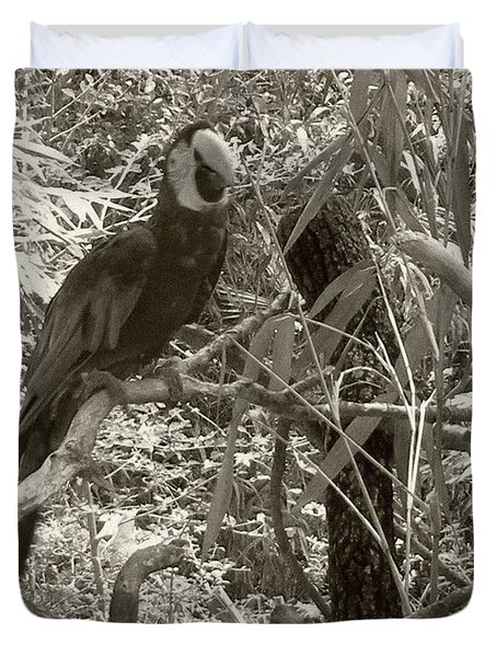 Duvet Cover featuring the photograph Wild Hawaiian Parrot Sepia by Joseph Baril
