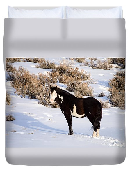 Wild Horse Stallion Duvet Cover