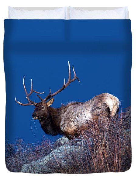 Wild Moon Duvet Cover