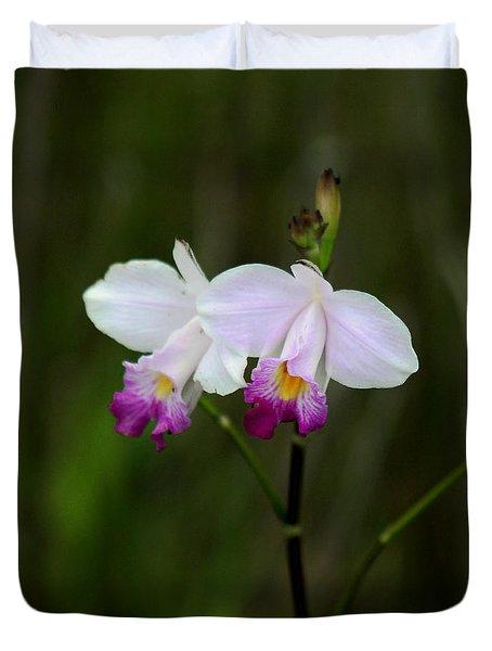 Wild Orchid Duvet Cover by Pamela Walton