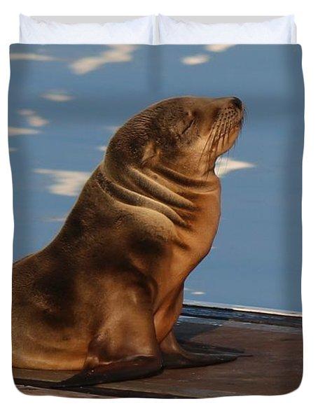 Wild Pup Sun Bathing - 2 Duvet Cover