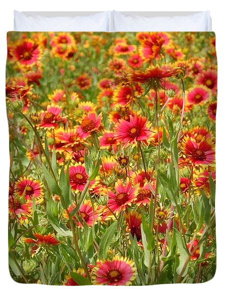 Duvet Cover featuring the photograph Wild Red Daisies #1 by Robert ONeil
