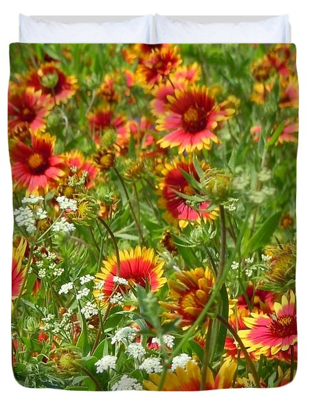 Duvet Cover featuring the photograph Wild Red Daisies #2 by Robert ONeil