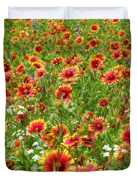 Duvet Cover featuring the photograph Wild Red Daisies #3 by Robert ONeil