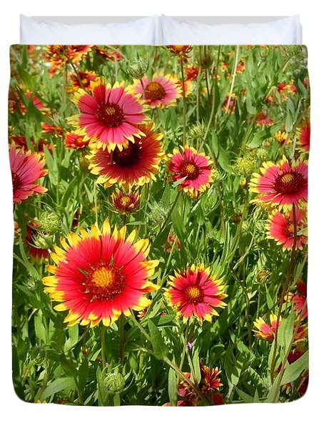 Duvet Cover featuring the photograph Wild Red Daisies #4 by Robert ONeil