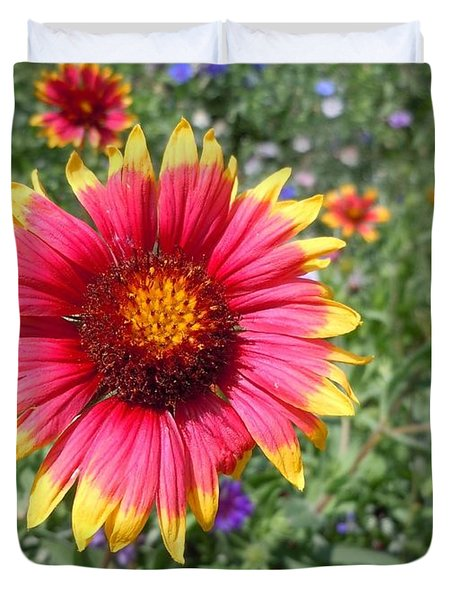 Duvet Cover featuring the photograph Wild Red Daisy #1 by Robert ONeil