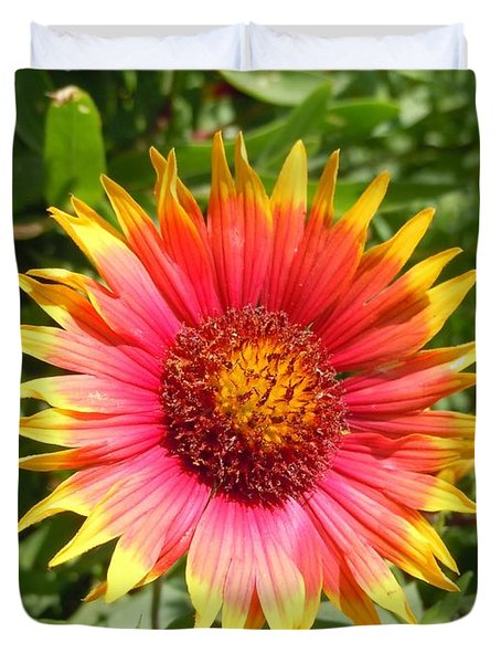 Duvet Cover featuring the photograph Wild Red Daisy #3 by Robert ONeil