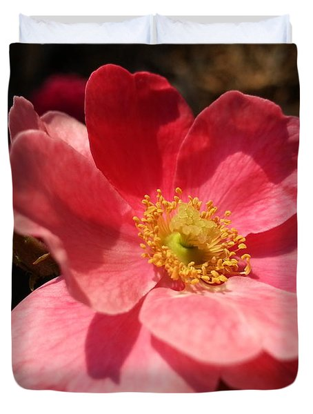 Wild Rose Duvet Cover by Caryl J Bohn
