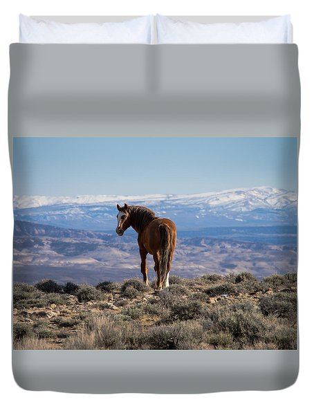 Wild Stallion Of Sand Wash Basin Duvet Cover