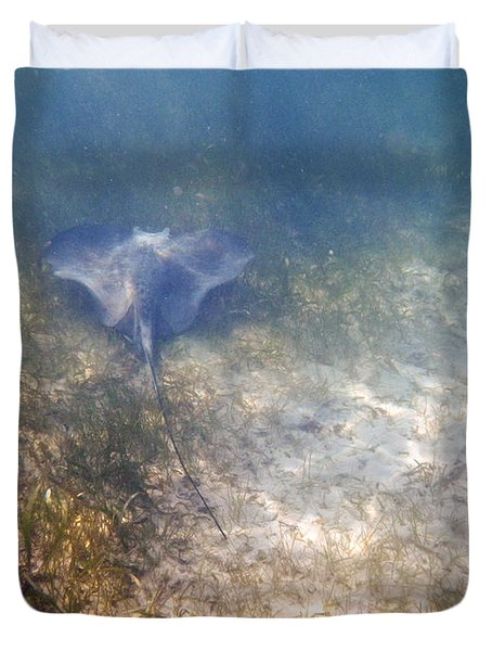 Duvet Cover featuring the photograph Wild Sting Ray by Eti Reid