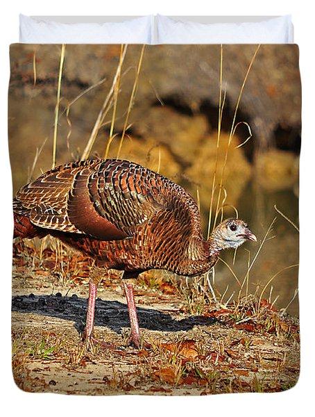 Wild Turkey Duvet Cover by Al Powell Photography USA