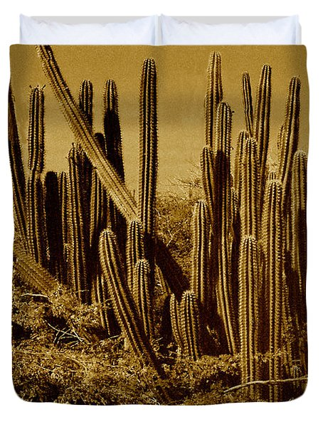 Wild West Ivb Duvet Cover by Anita Lewis