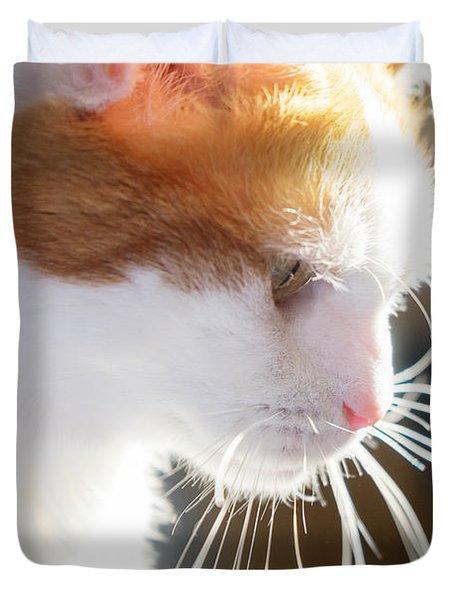 Wild Whiskers Duvet Cover