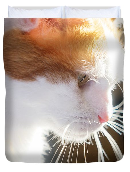 Wild Whiskers Duvet Cover
