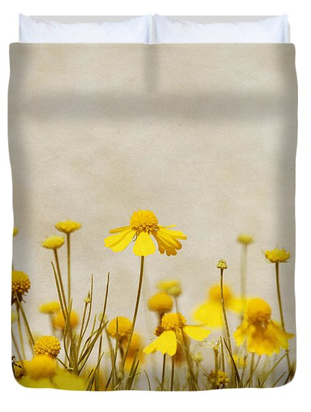 Wildflower Daisies Duvet Cover by Kim Hojnacki