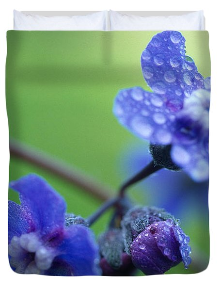 Wildflower In The Rain Duvet Cover by Kathy Yates