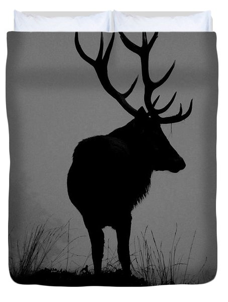 Wildlife Monarch Of The Park Duvet Cover