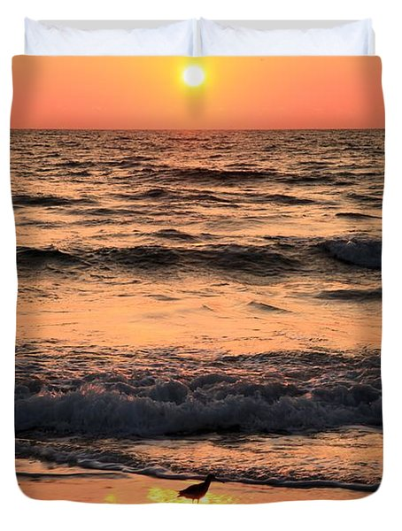 Willet In The Spotlight Duvet Cover by Adam Jewell