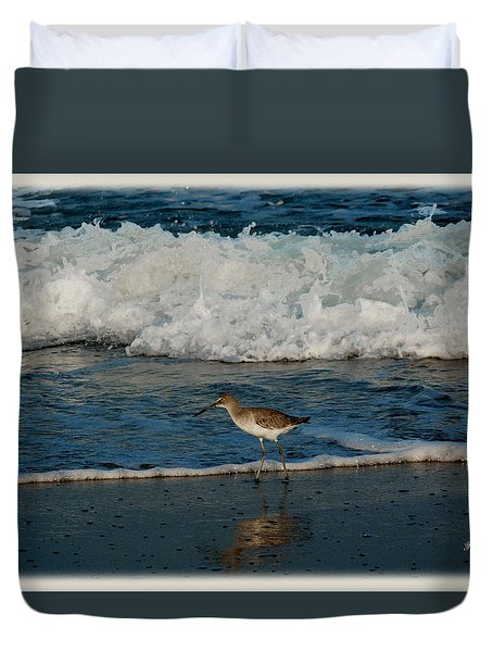 Duvet Cover featuring the photograph Willet Shore Bird by James C Thomas