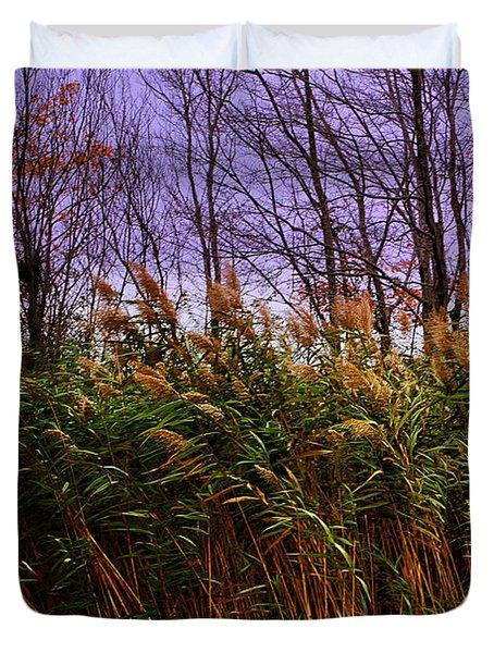 Willows In The Wind Bristol Rhode Island Duvet Cover by Tom Prendergast