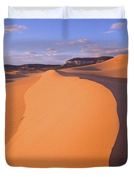 Wind Ripples In Sand Dunes Duvet Cover