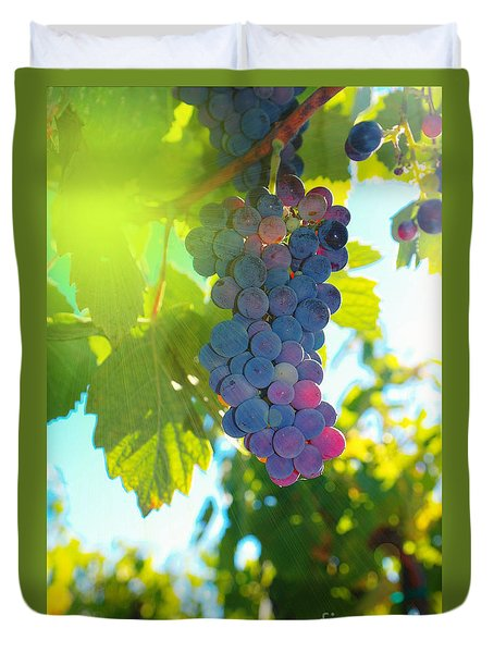 Wine Grapes  Duvet Cover by Jeff Swan