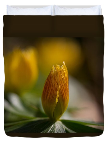 Winter Aconite Duvet Cover by Andreas Levi