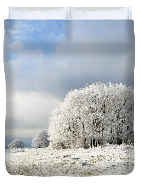 Winter Duvet Cover by Anne Gilbert
