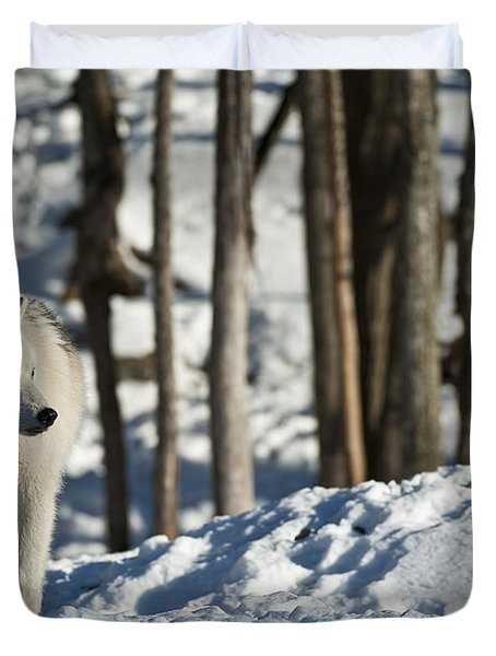 Duvet Cover featuring the photograph Winter Arctic Wolf by Wolves Only