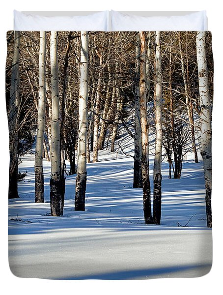 Duvet Cover featuring the photograph Winter Aspens by Jack Bell