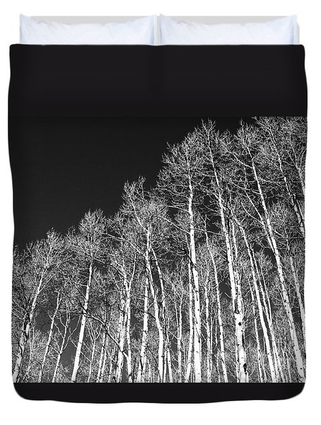 Duvet Cover featuring the photograph Winter Aspens by Roselynne Broussard