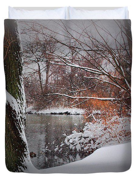 Winter At The Pond Duvet Cover by Mikki Cucuzzo