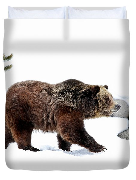 Winter Bear Walk Duvet Cover by Athena Mckinzie