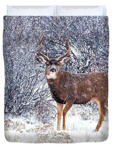 Winter Buck Duvet Cover