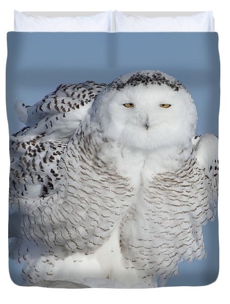 Winter Coat Duvet Cover by Heather King