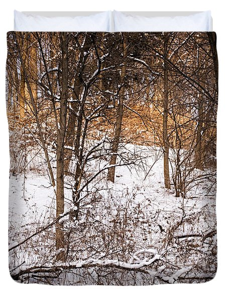 Winter Forest Duvet Cover by Elena Elisseeva